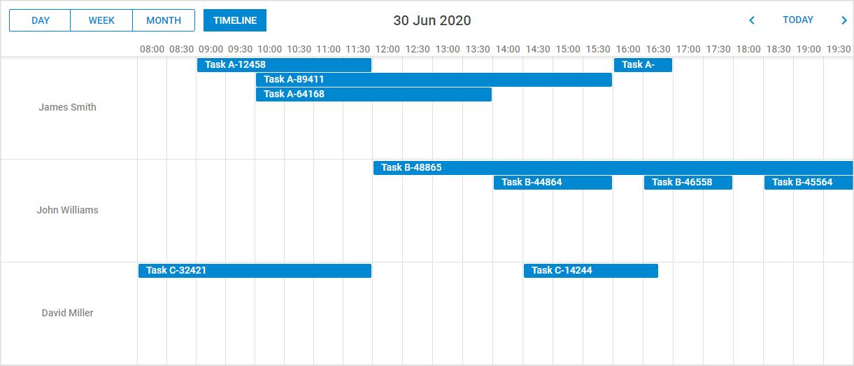 JavaScript Timeline view